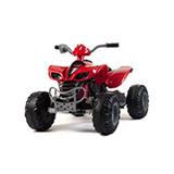 Quad motori